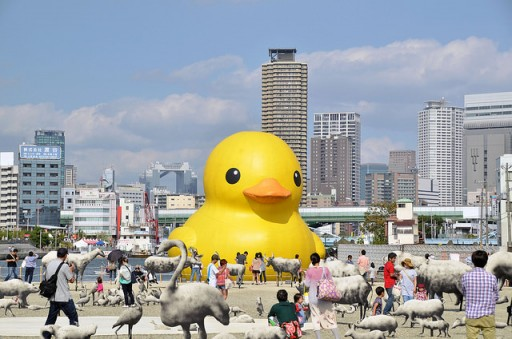 duck-g-b5mn